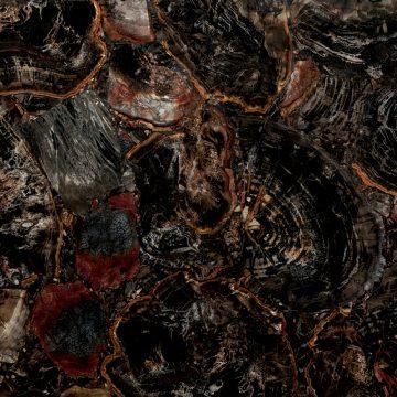 Black Petrified Wood   Schmuckstein schwarz