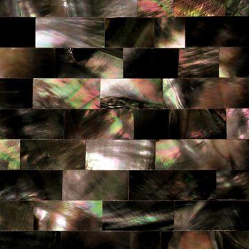 Black Mother of Pearl (Large Brick) Muschel schwarz gruen braun multicolor
