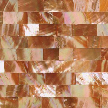 Caramel Abalone (Large Brick) Muschel beige grau rosa rot gruen